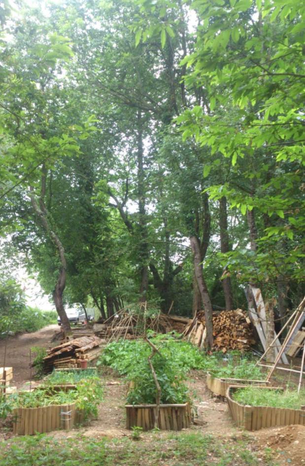 Atelier de permaculture 1