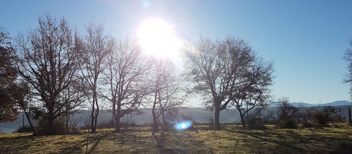 Au soleil levant d'hiver
